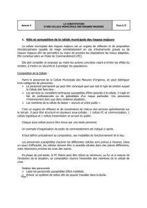 thumbnail of 14-Annexe-4-constitution-dune-cellule-municipale