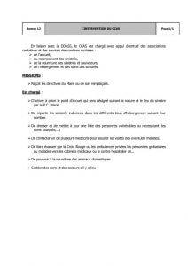 thumbnail of 22-Annexe-12-intervention-du-ccas